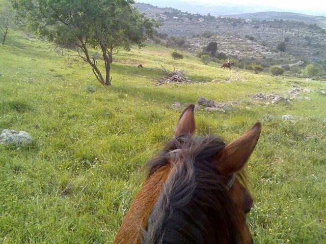 Jesus Trail on Horseback Nazareth