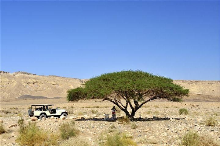 Safari Jeep Tour to the Dead Sea
